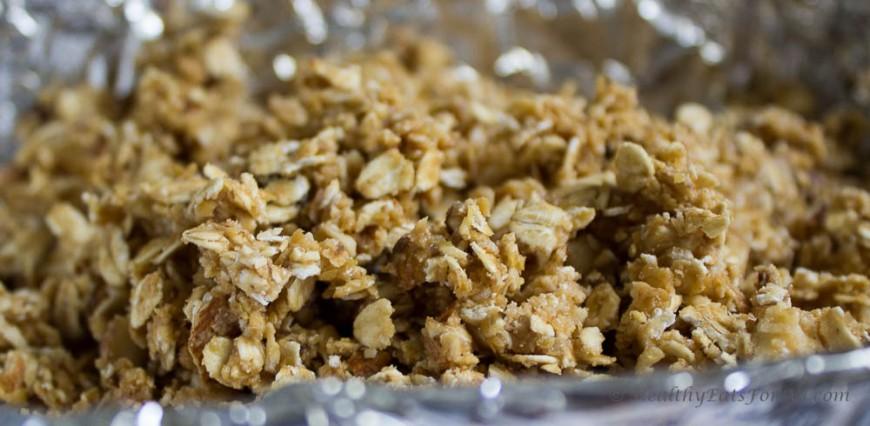 Nutty Granola Bars-6