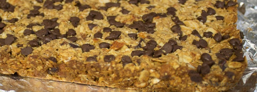 Nutty Granola Bars-9
