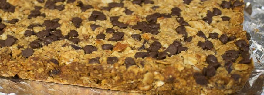 Nutty Granola Bars-9