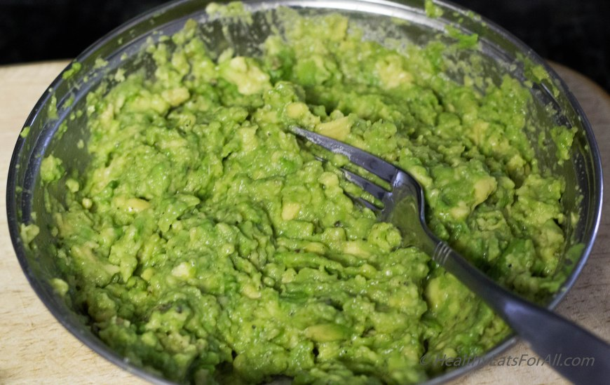 Restaurant Style Salsa and Guacamole-13